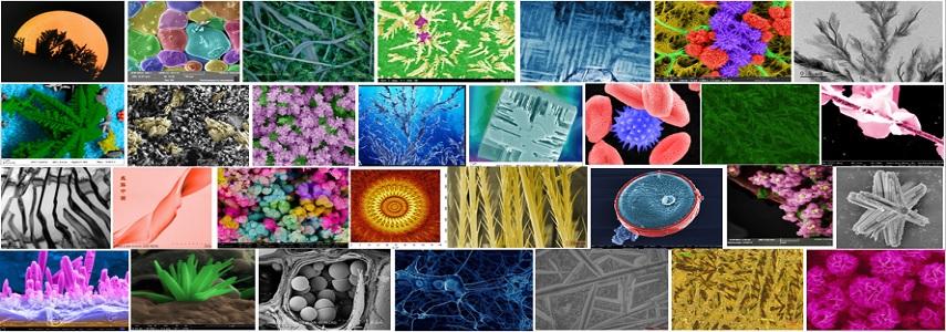 材料之美:第五届材料微结构大赛结果公布!